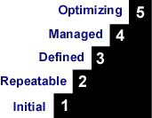 Steps=initial,repeatable, defined, managed, optimizing